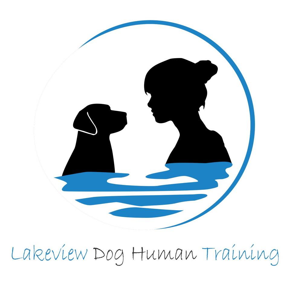 Dog Human Training